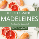 blood orange madeleines pin