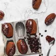 chocolate espresso madeleines in madeleine pan