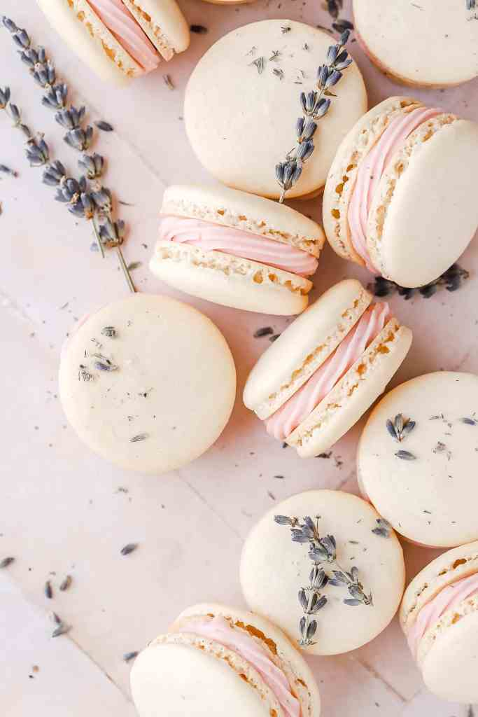 blackberry lavender macarons with dried lavender