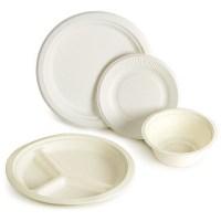 Biodegradable Sugarcane Disposable Plates & Bowls ...