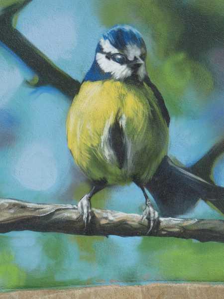 Detalle del pájaro sobre una rama
