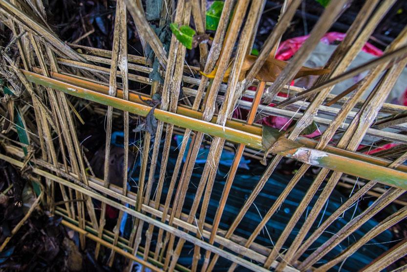 Afdød i bambusbur