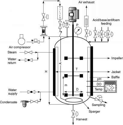 Submerged Pump Wiring Diagrams Pump Filter Diagram Wiring