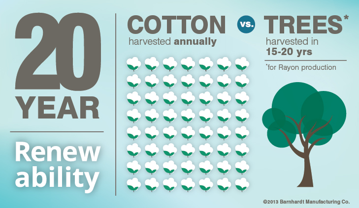 Harvested Cotton Infographic | Barnhardt Cotton