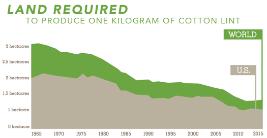 Land Required to Produce One Kilogram of Cotton Lint