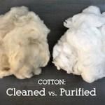 Cleaned cotton vs Purified cotton | Barnhardt Cotton