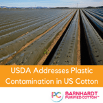 USDA Addresses Plastic Contamination in US Cotton