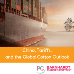 Market Focus: the Trade War and the Global Cotton Market