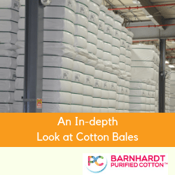 An In-depth Look at Cotton Bales