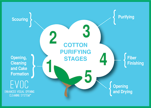Cotton Purifying Stages