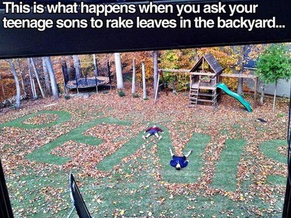 Rake Leaves Or Not