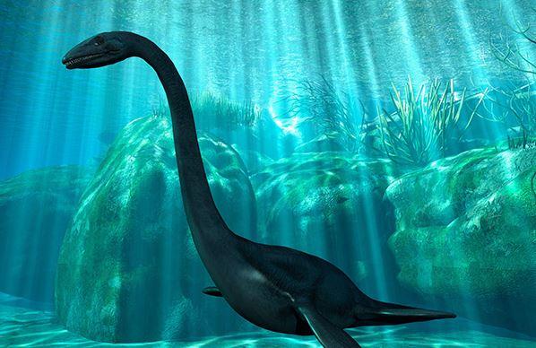 Loch Ness Monster Found Barnorama