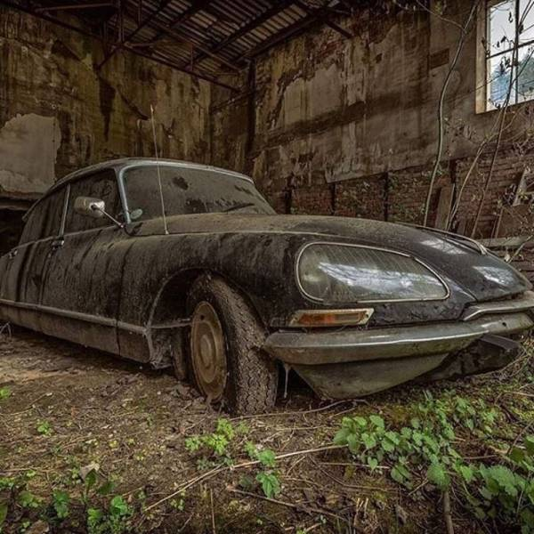 Wallpaper Dino Cute Abandoned Legendary Cars Barnorama