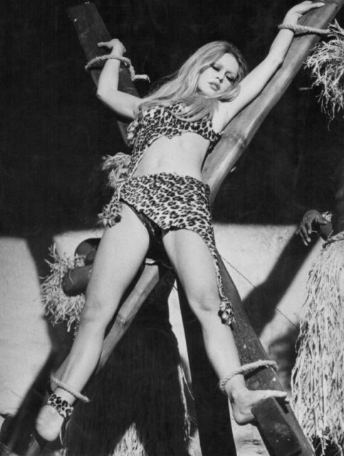 Hot Brigitte Bardot Photos  Barnorama