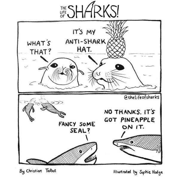 30 Funny Comics That Give Us Funny Insights Into Shark