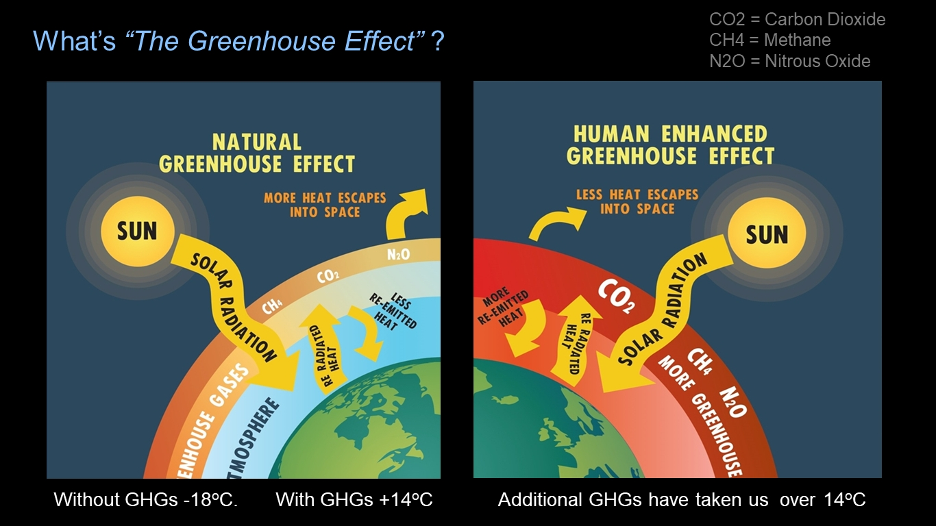 The Climate And Ecological Crisis