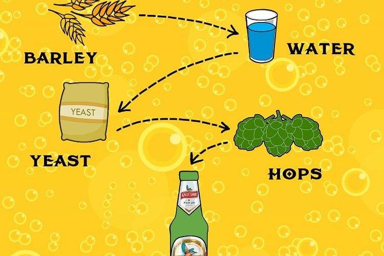 biranın içindekiler - içeriği