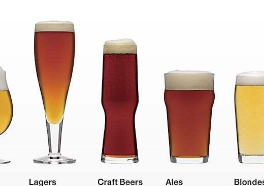 ale lager bira çeşitleri beer types