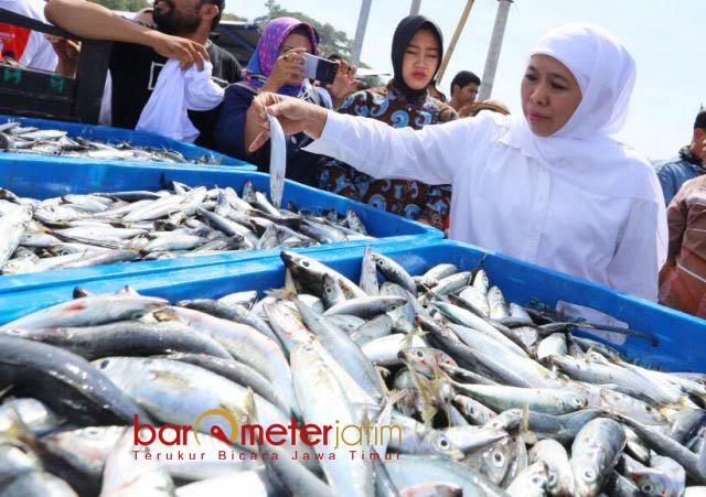 TPI SENDANG BIRU: Cagub Khofifah Indar Parawansa mengunjungi TPI Sendang Biru, Malang, Jumat (25/5). | Foto: Barometerjatim.com/MARIJAN AP
