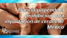 Francia suspende la prohibición para importación de cerdos de México