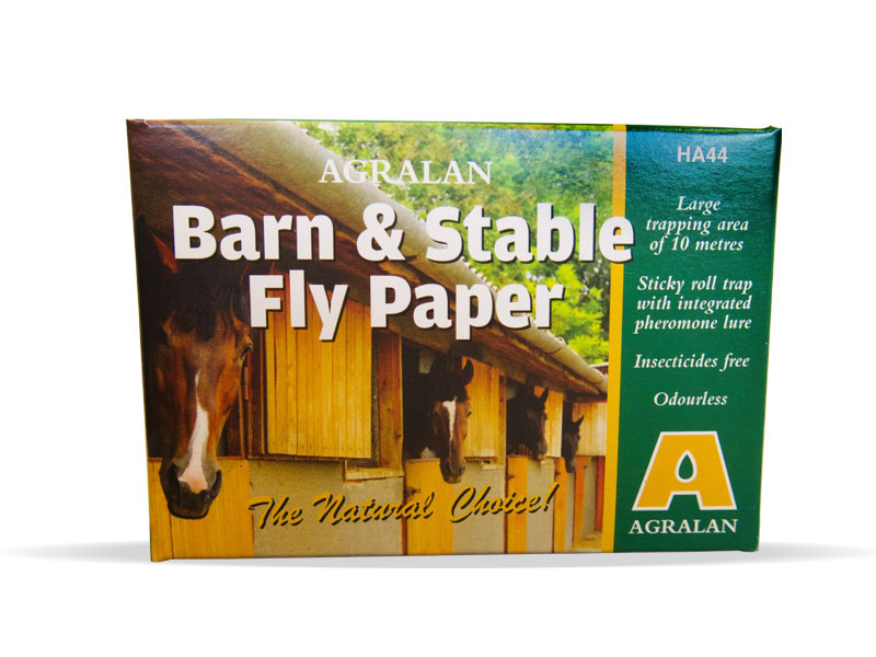 barn stable fly catcher