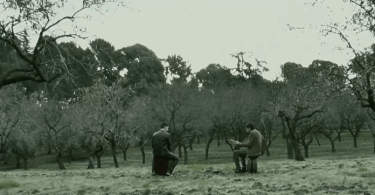 música en la Quinta de los Molinos