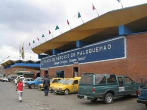 Paloquemao