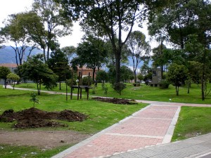 Árboles para Bogotá