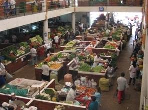Renuevan cédulas en plazas de mercado