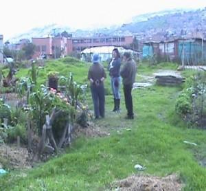 Agricultura urbana en Ciudad Bolívar