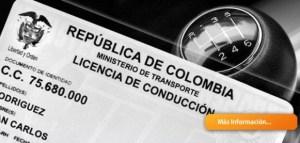 Licencias de conducción