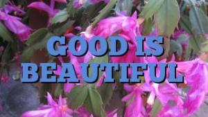 GOOD IS BEAUTIFUL