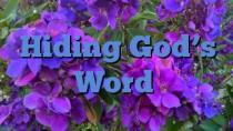Hiding God's Word