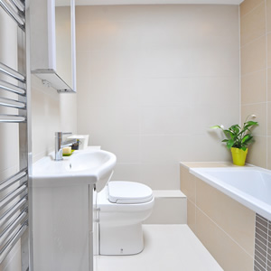 Bathroom with a towel rail, bath, sink toilet and a flower in the corner