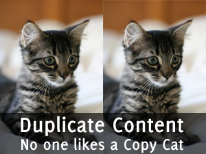 2 Copy Cats - No one likes Duplicate Content