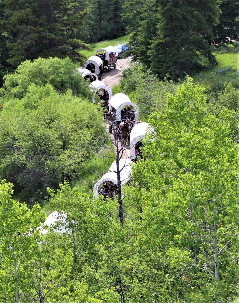 Wagons headed up Cache Creek Canyon for a chuck wagon dinner.