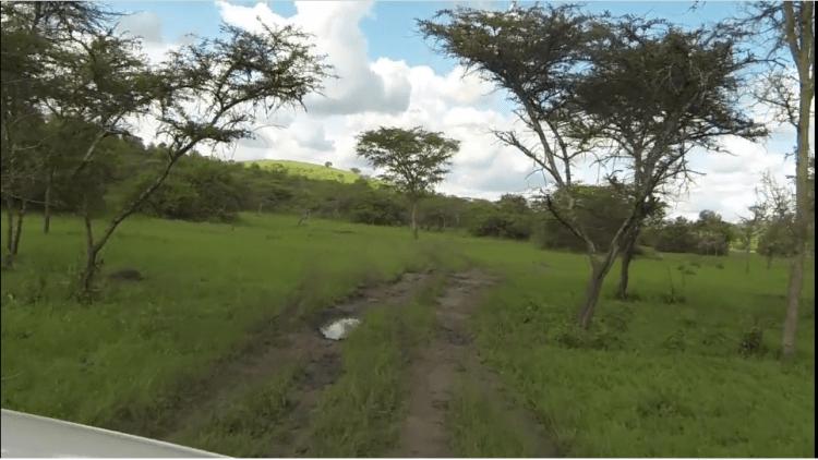 Roadtrip Uganda