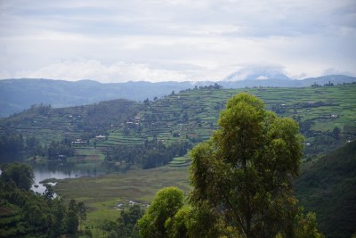 Blick auf die Virunga Vulkane
