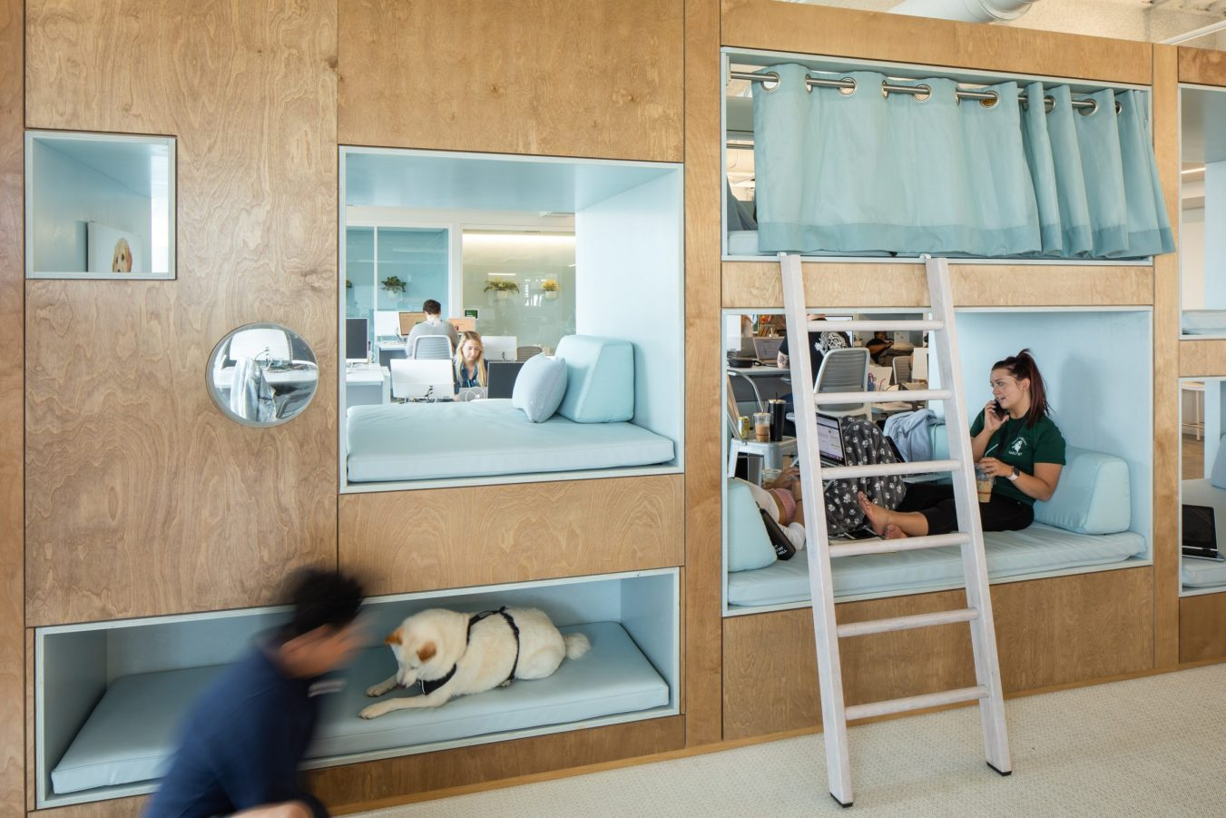 Employees and dogs enjoy cubbie spaces at Bark + Co.