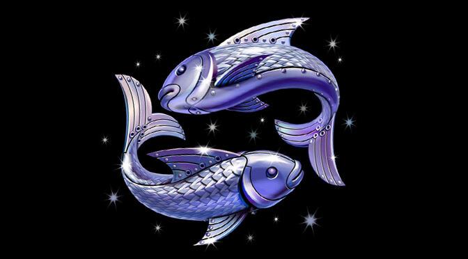 balık balık