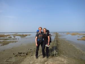 De Waddenzee aangetikt ten noorden van Pieterburen