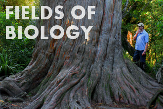 Fields of biology