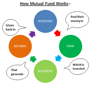 Basic Investments  Mutual Fund  Insurance  PMS  Fixed