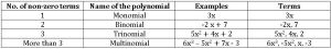 ts ix maths type of polynomial according to terms