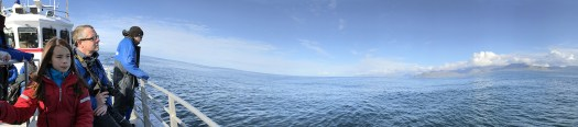 Panorama picture on-board the Laki Tour in Olafsvik. We spotted over 100 whales! - Iceland holiday tips