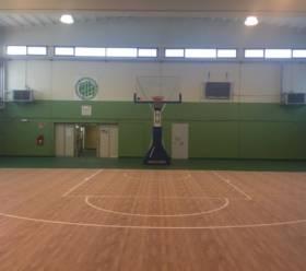 Campo (6)