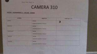 camera 310