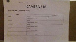 camera 316