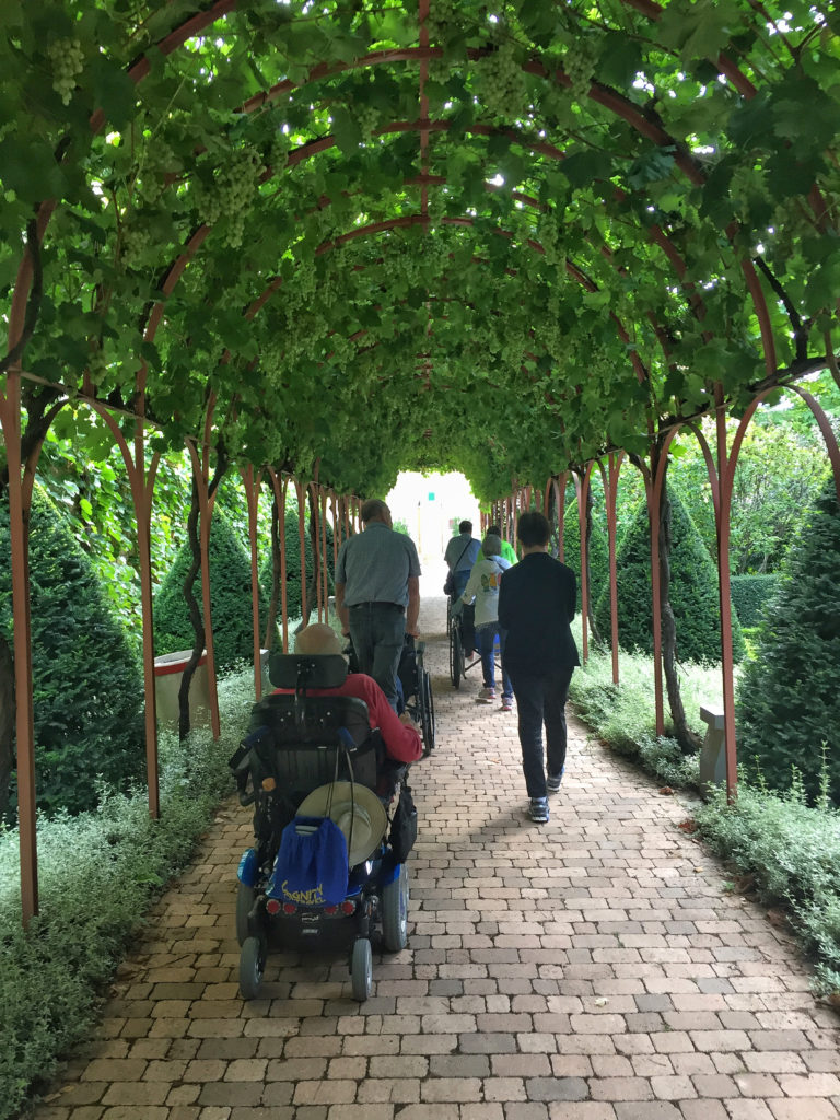 Accessible la rioja wine tour vineyards