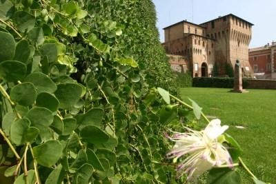 Rocca Lugo_Capperi_bassaRomagnaMia